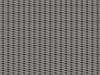 incana_arco_carbon